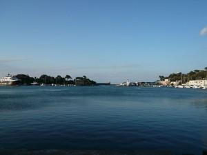 il porto di Ischia Il bacino d'acqua, circolare, un tempo era un lago vulcanico che è stato collegato al mare nel 1854 per volere di Ferdinando II proprio allo scopo di farne un porto
