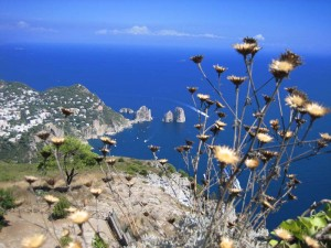 Capri_dal_monte_solaro